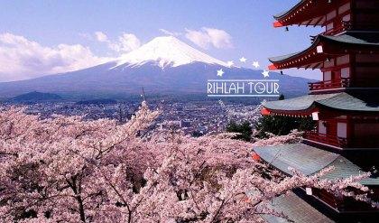 Wisata Jepang Sakura